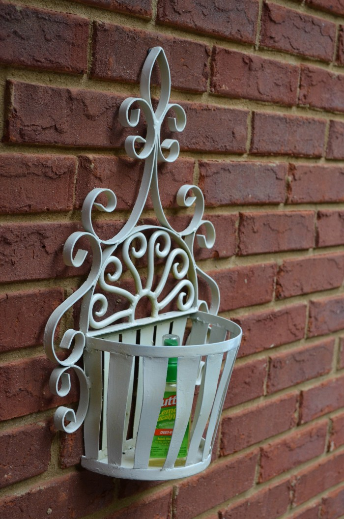 Iron Planter After