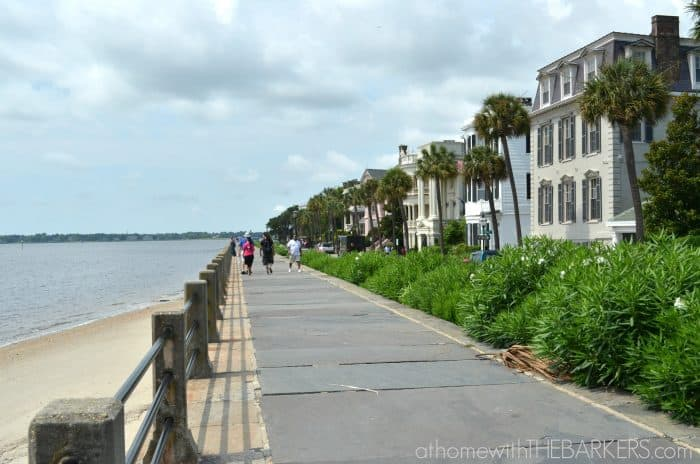 Summer Travel- Charleston Walking Tour The Battery