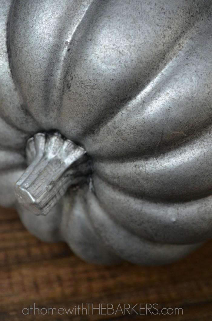Aged Zinc-Pumpkin Stem