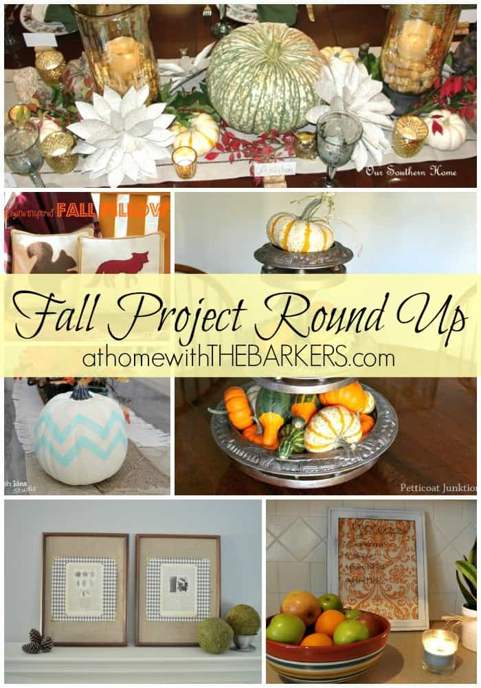 Fall Round Up