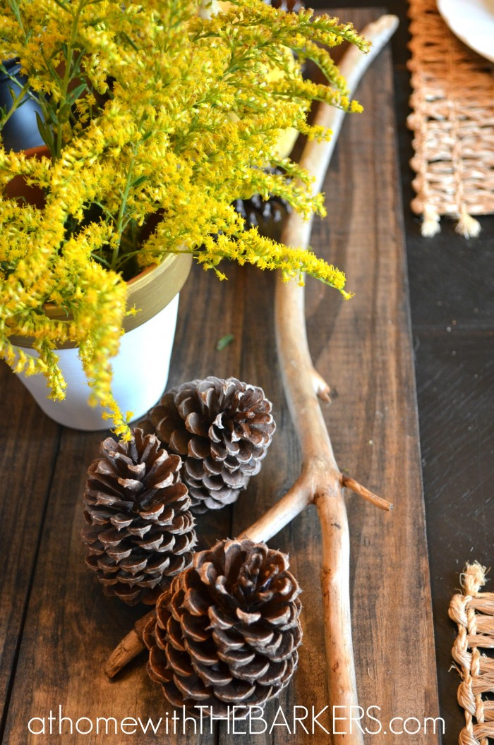 Fall Tour Dining Pine Cones