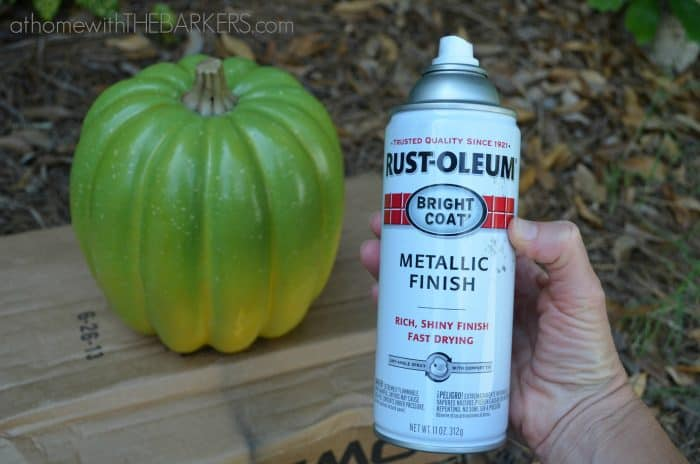 Plastic Pumpkin-Rustoleum-Spray-paint