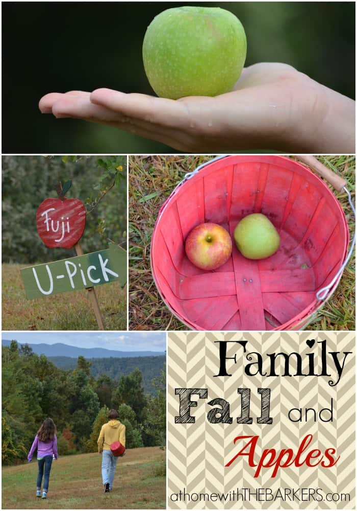 Sky Top Family Fall and Apples