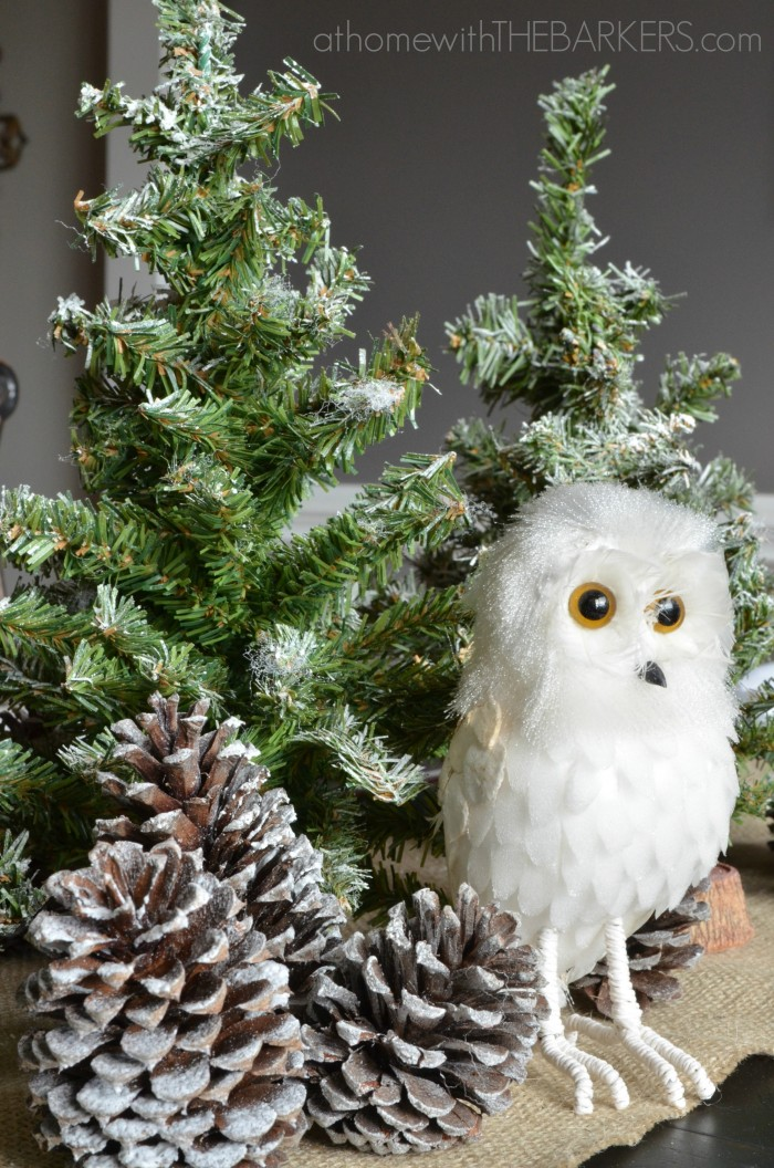 Christmas Tour Owl