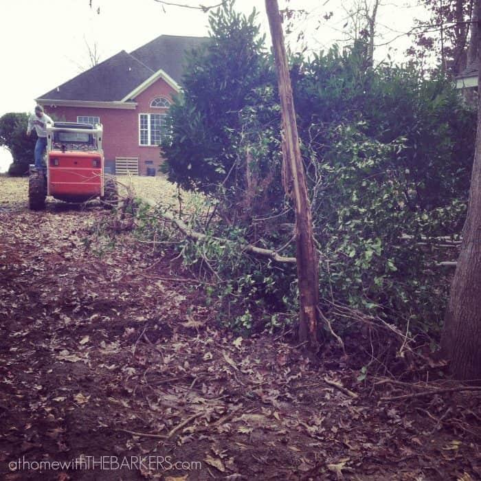 Duluth shirt review yard work
