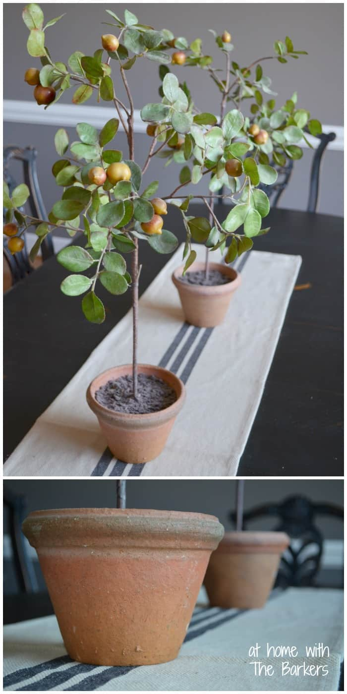 Topiary Pot Makeover-Before adding homemade chalk finish paint
