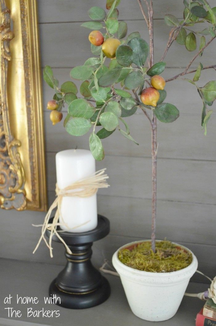 Topiary Pot Makeover-Mantel Decor