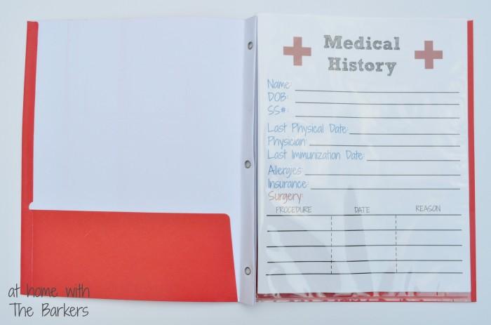 Medical History Free Printable-Folder