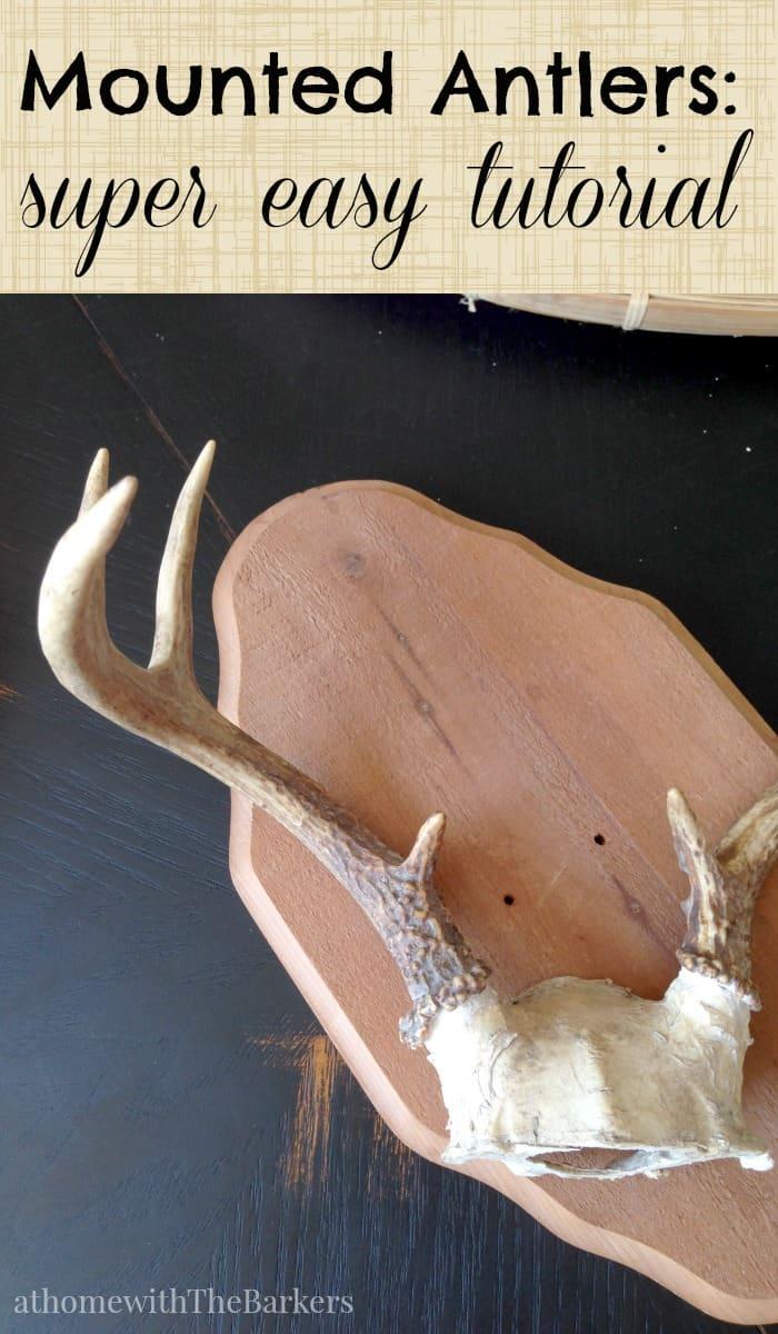 Mounted Antlers-Super Easy Tutorial