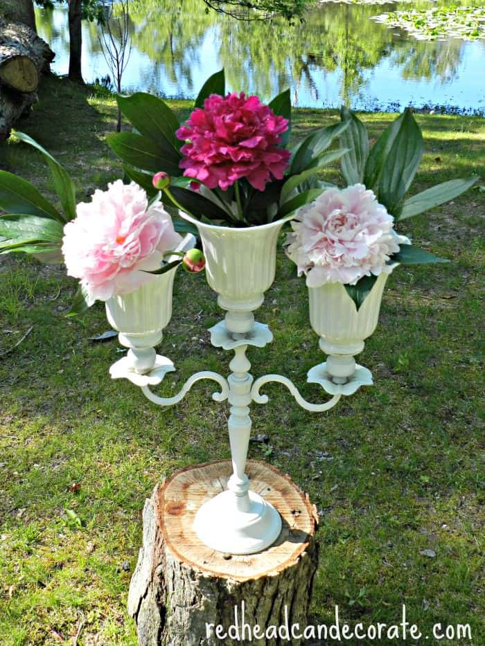 Peonies Candelabra-Redhead can Decorate
