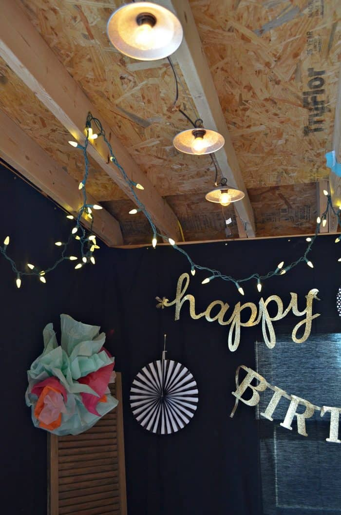 Birthday Party Decorations on a budget!