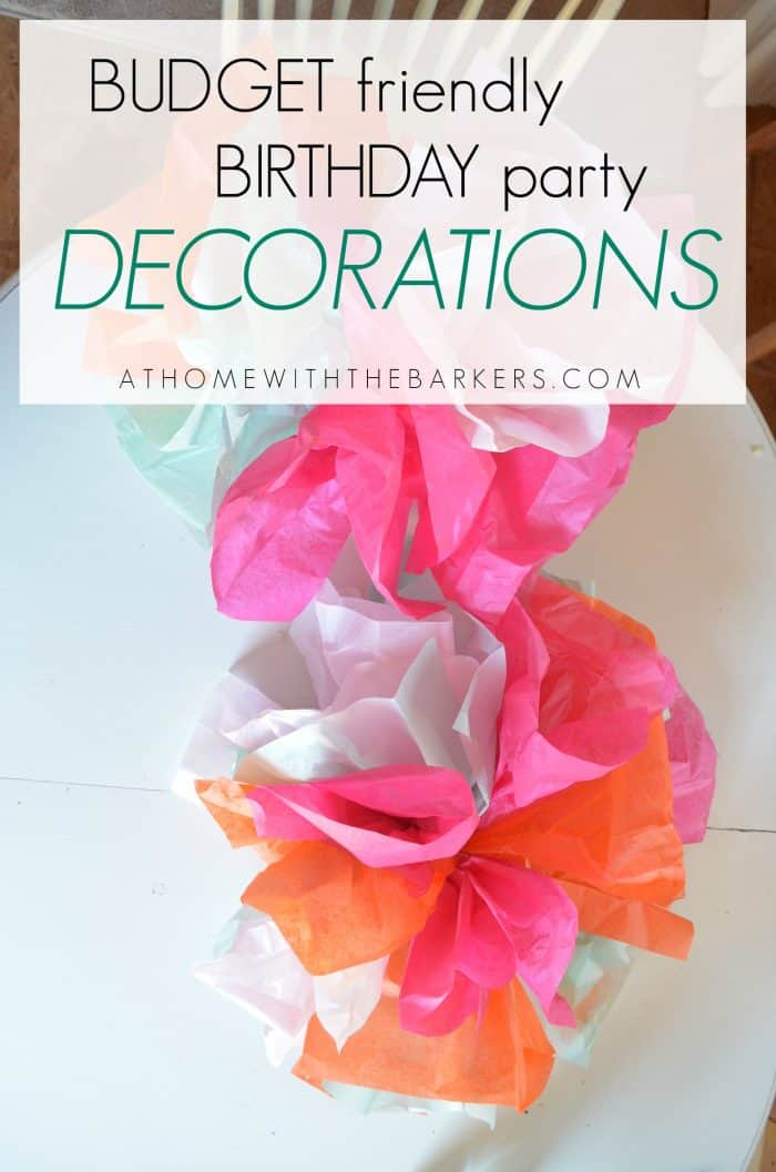 Budget-Friendly-Birthday-Party-Decorations-At-Home-with-The-Barkers ...