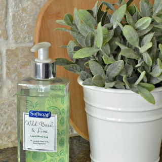 Spring Cleaning Essential Home Care