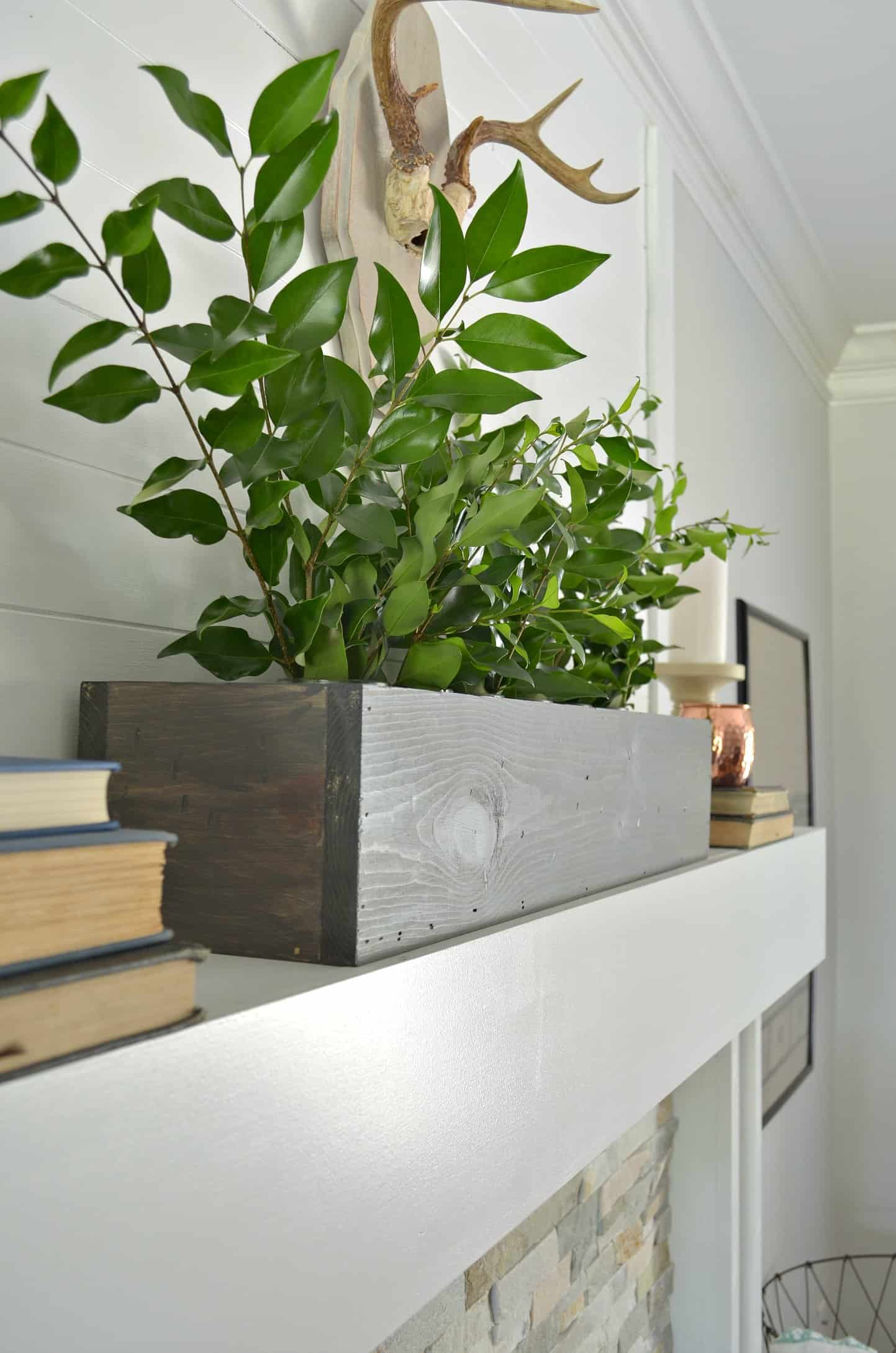 Diy Flower Box At Home With The Barkers