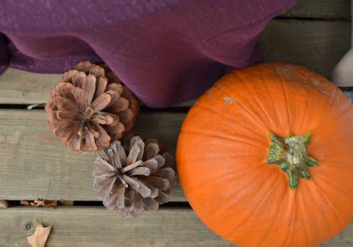Purple and Orange Fall Decor