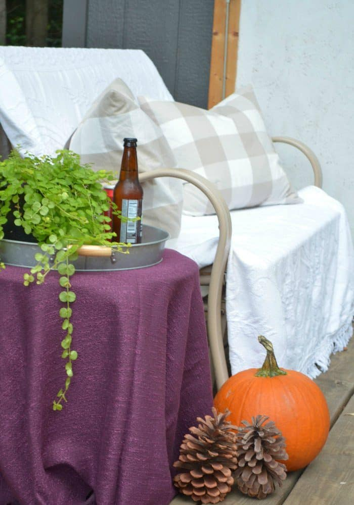 Shed Fall Porch