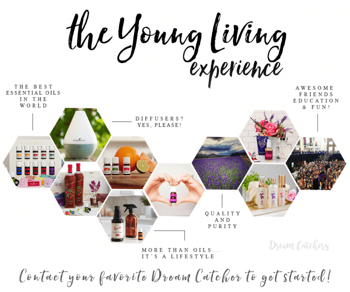 young-living-experience-honeycomb