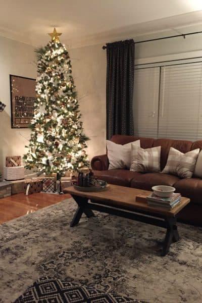 Christmas Nights Tour iPhone photo tips