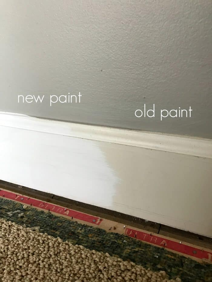 Latex paint from carpet