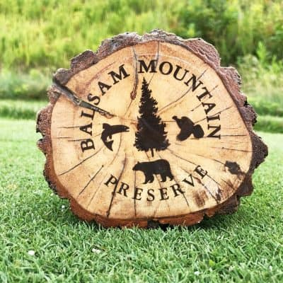 Balsam Mountain Preserve Tour