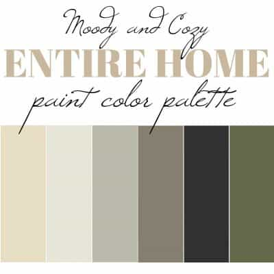 Moody and Calming interior paint color palette